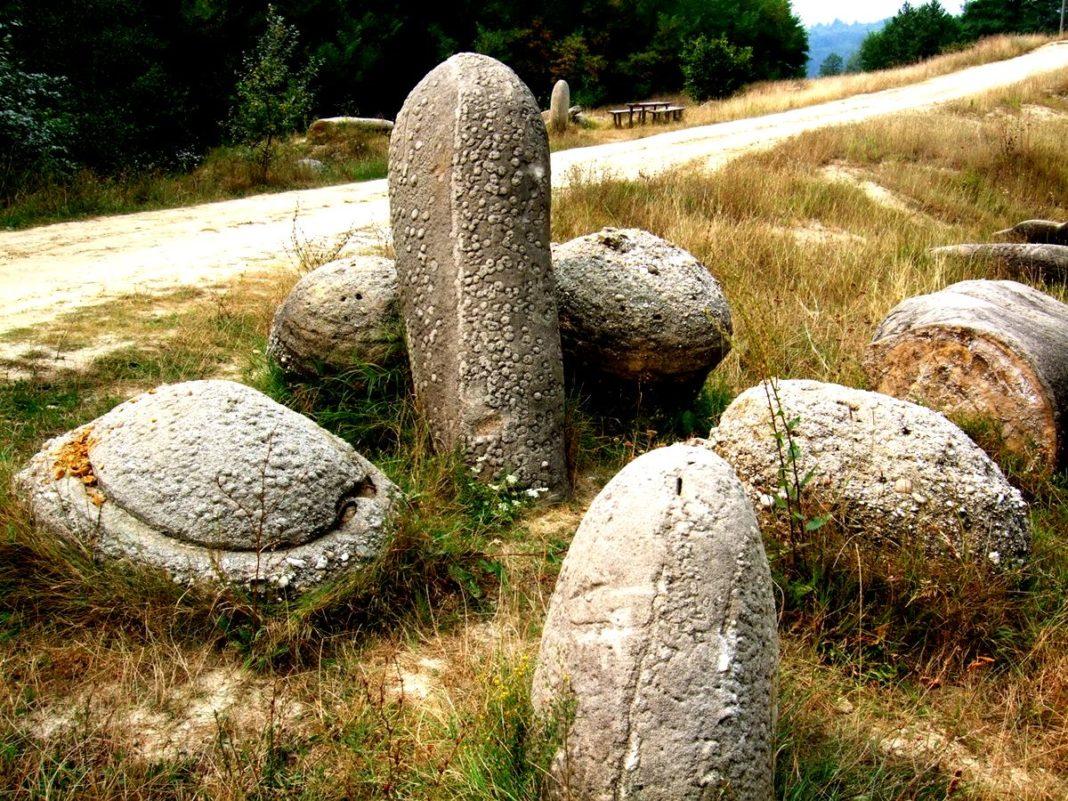 Камни трованты: необычные особенности живых валунов